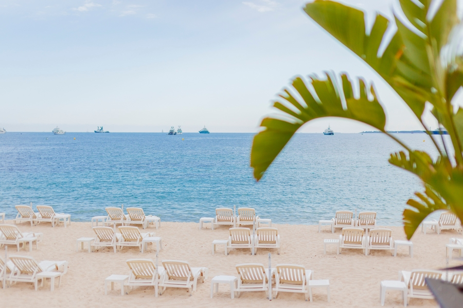 Palm tree leaf and white beach chairs along the Mediterranean beaches