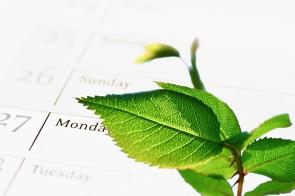 company's green agenda (CSR)