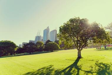 20141230 Sydney 1213-1024