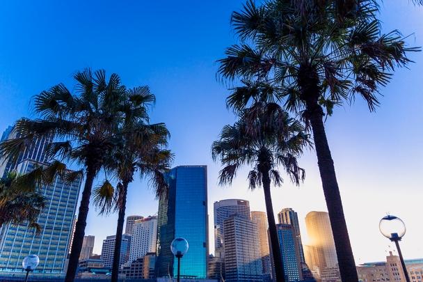 20141230 Sydney 1536-1-1024