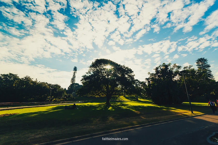 Lost in the green by Faithieimages 01