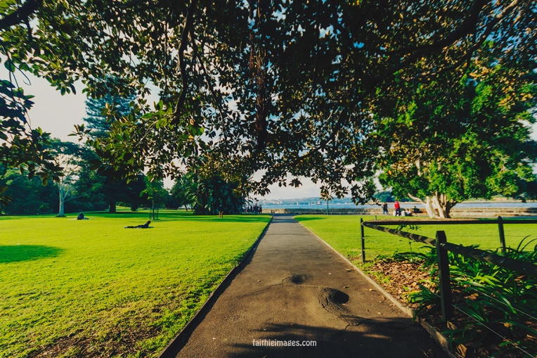 Lost in the green by Faithieimages 05