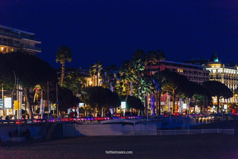 Palm tree nights by Faithieimages