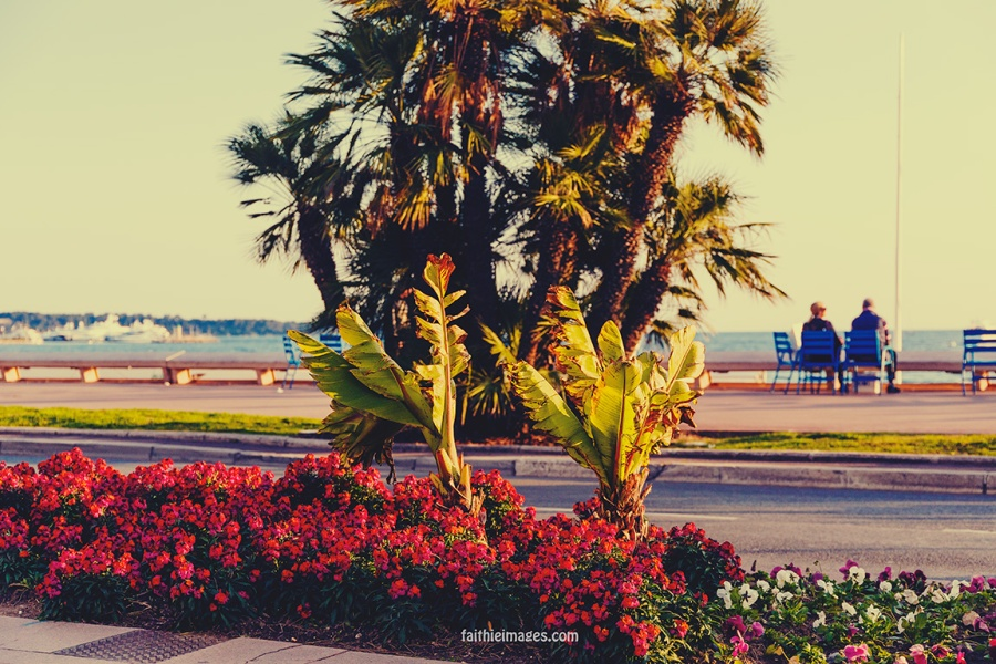 Cannes mix by Faithieimages 02