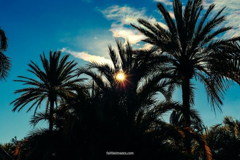 Cannes mix by Faithieimages 04