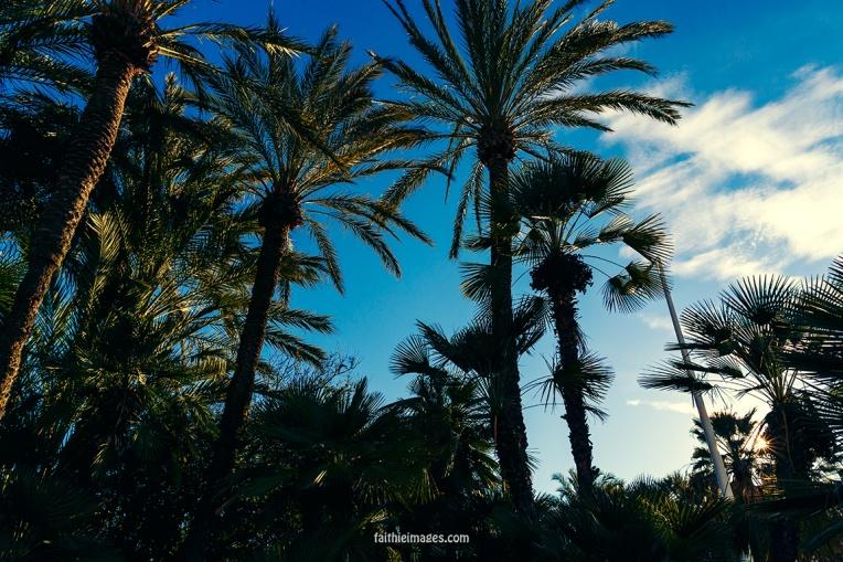 Cannes mix by Faithieimages 06