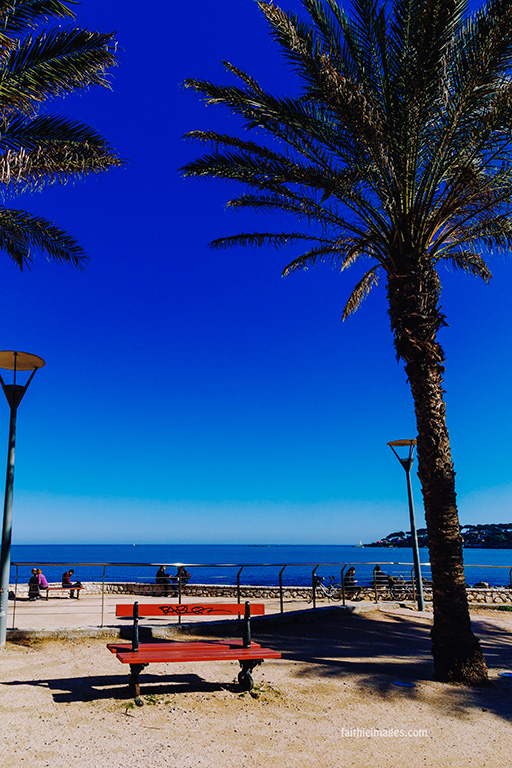 Horizon and palm trees by Faithieimages 04