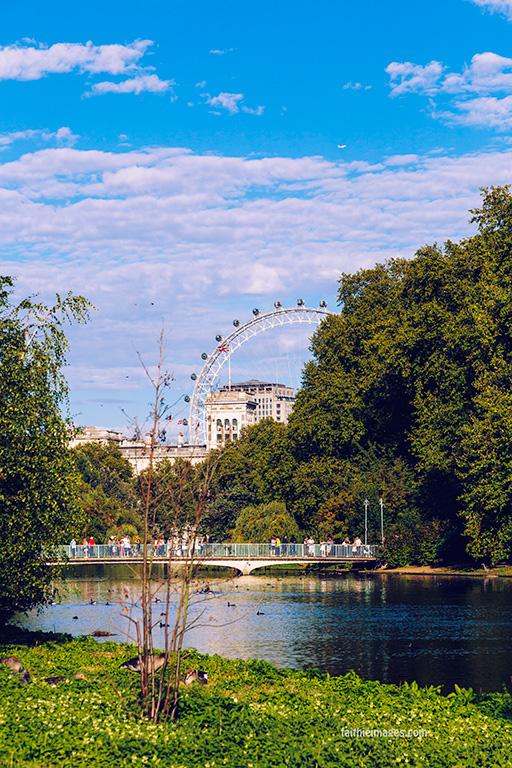 London Eye Peekaboo 003
