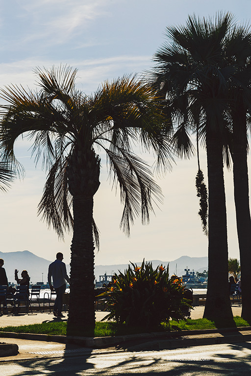 Riviera mix by Faithieimages 05