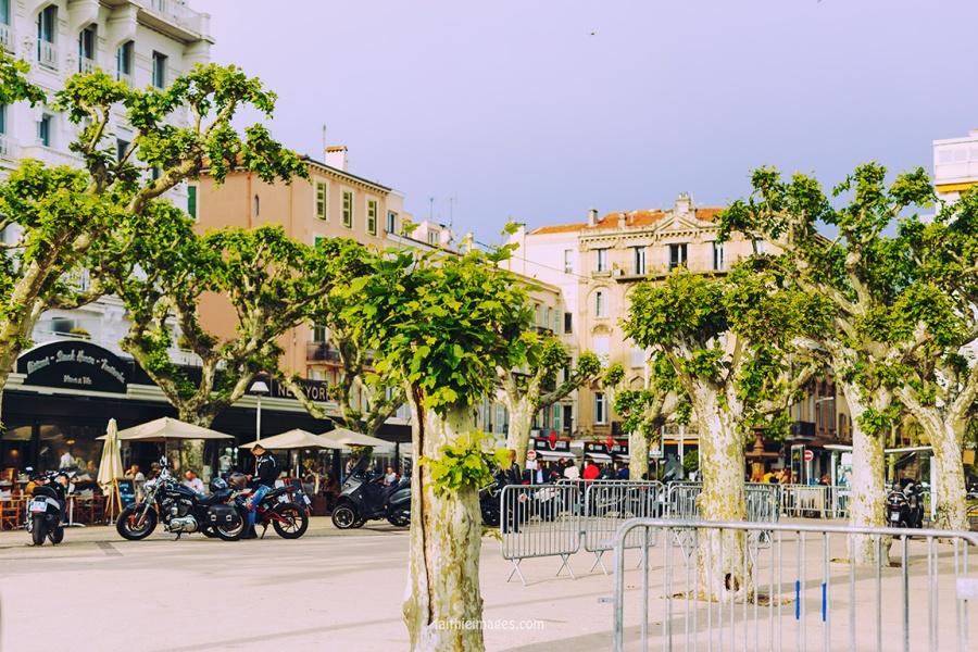 Cannes Pantiero Promenade pt 1 005