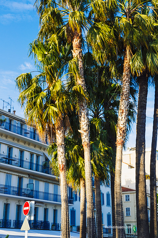 Cannes Pantiero Promenade pt 1 009