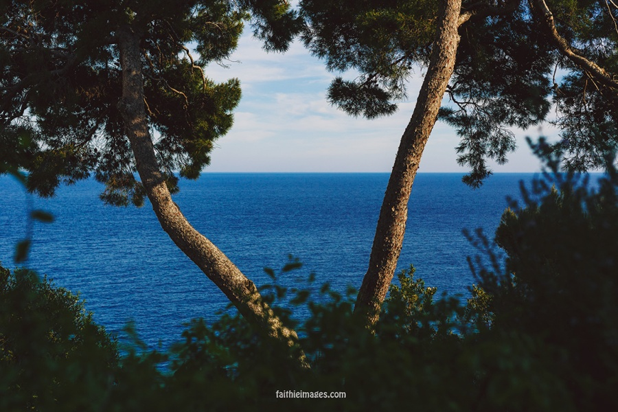 Faithieimages - Monaco Gardens pt. 2 002