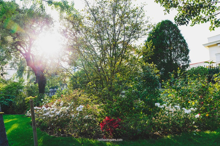 Faithieimages - Monaco Gardens pt. 2 008