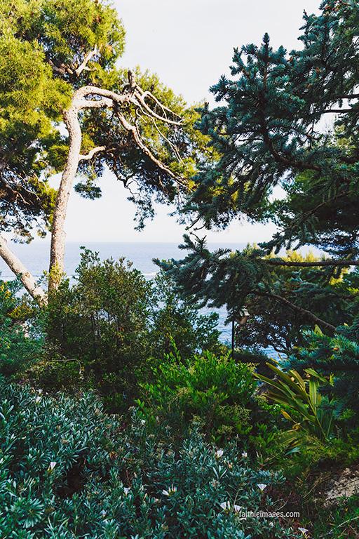 Faithieimages - Monaco Gardens pt. 2 012