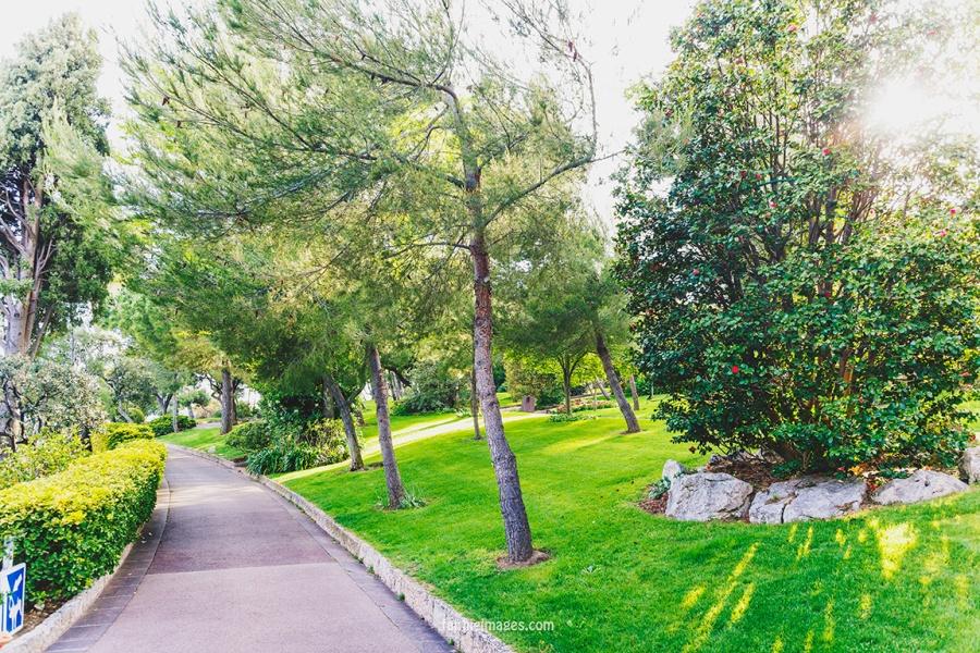 Faithieimages - Monaco Gardens pt. 2 013