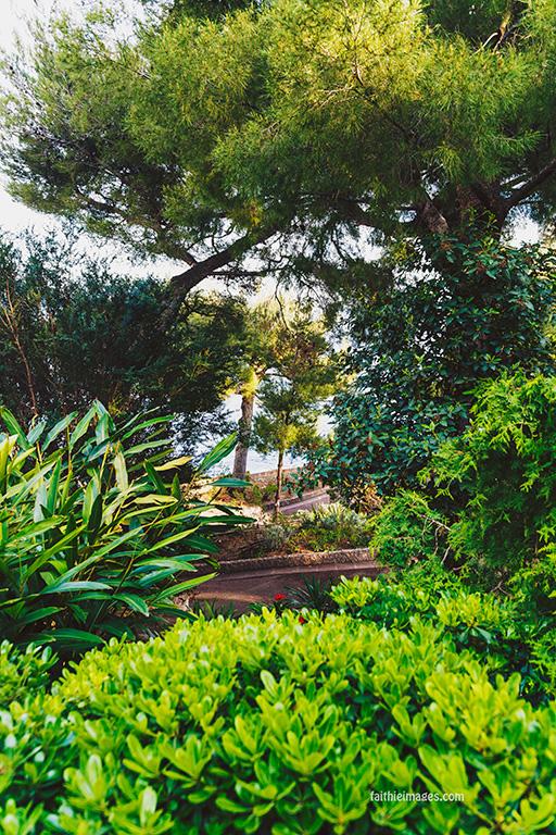Faithieimages - Monaco Gardens pt. 2 015