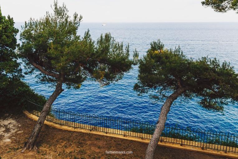 Faithieimages - Monaco Gardens pt. 2 021