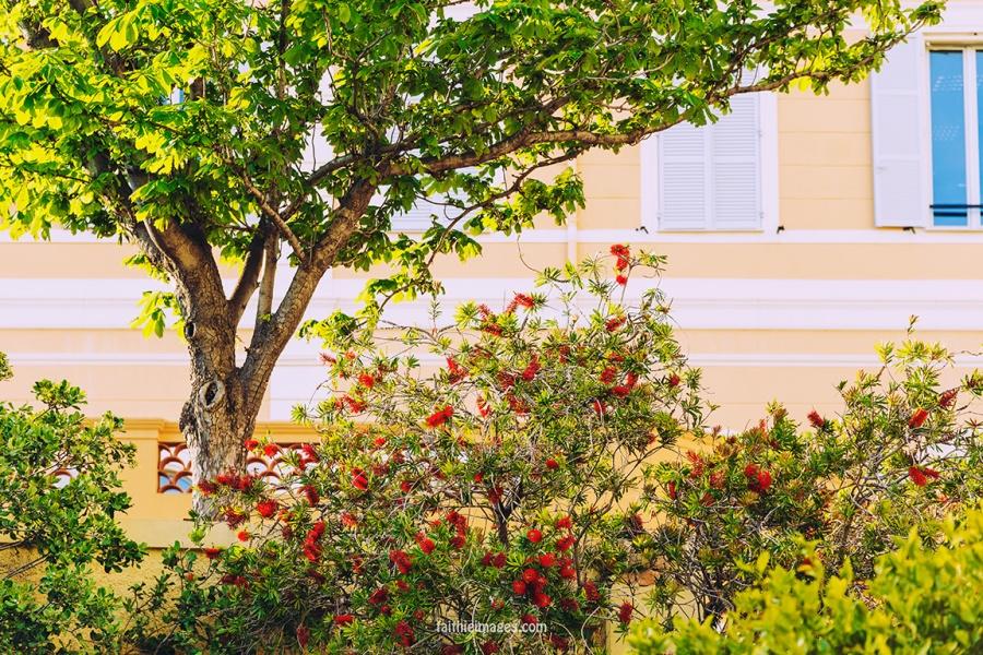 Faithieimages - Monaco street snaps pt.2 008