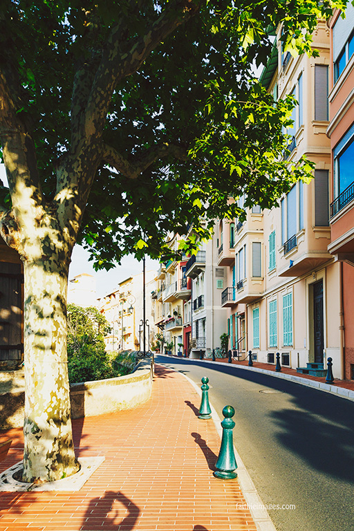 Faithieimages - Monaco View from the Palais 007