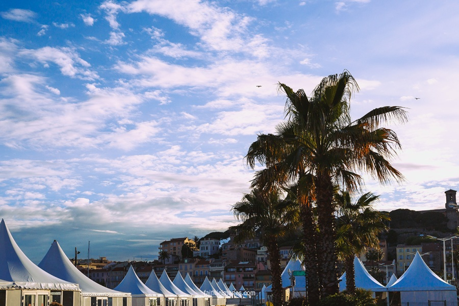 ready, set, action Cannes Palais007