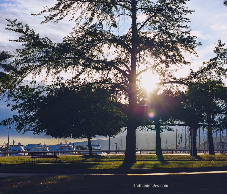 Sunshine on the Pointe Croisette 005
