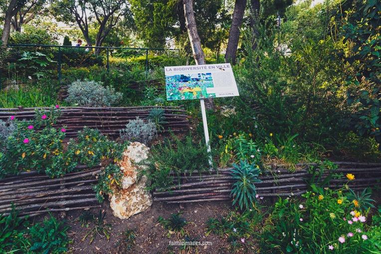 Faithieimages - In the Jardins 003