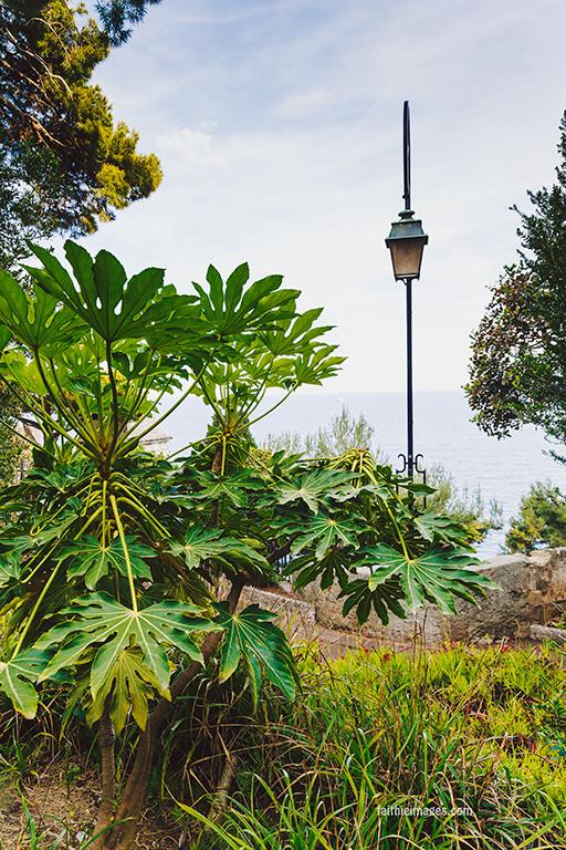 Faithieimages - In the Jardins 011