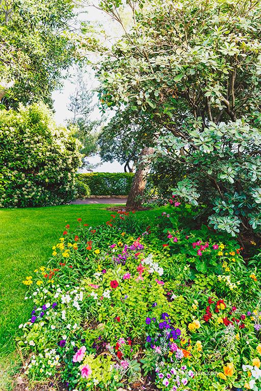 Faithieimages - In the Jardins 012