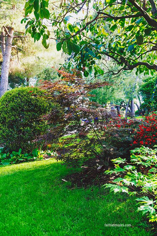 Faithieimages - In the Jardins 015