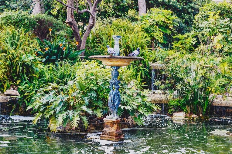 Faithieimages - In the Jardins 019