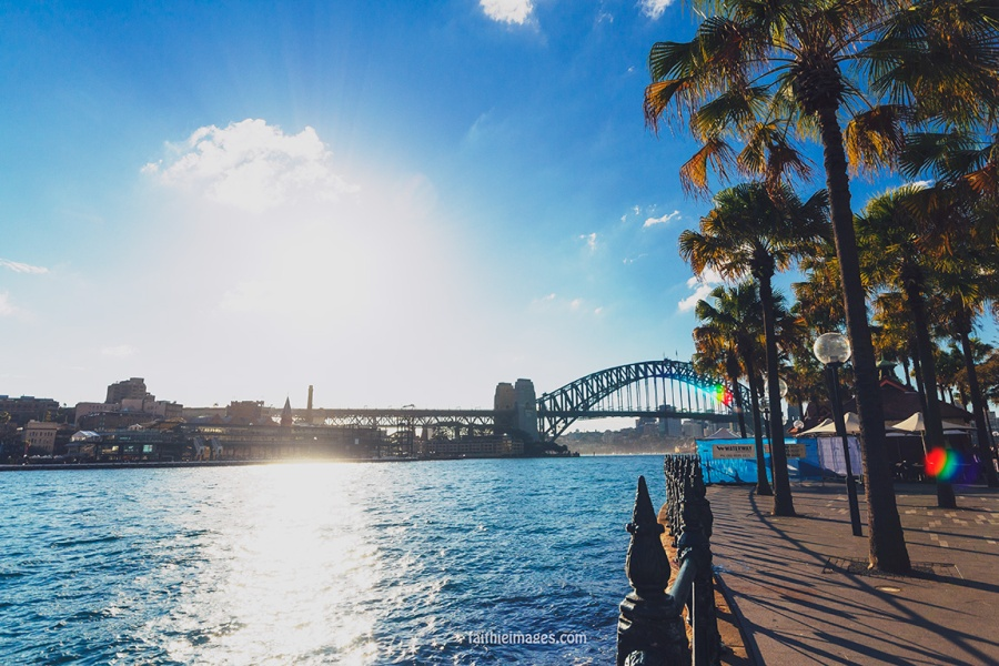 Faithieimages - Sunshine on the Harbour 009
