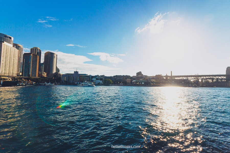 Faithieimages - Sunshine on the Harbour 012