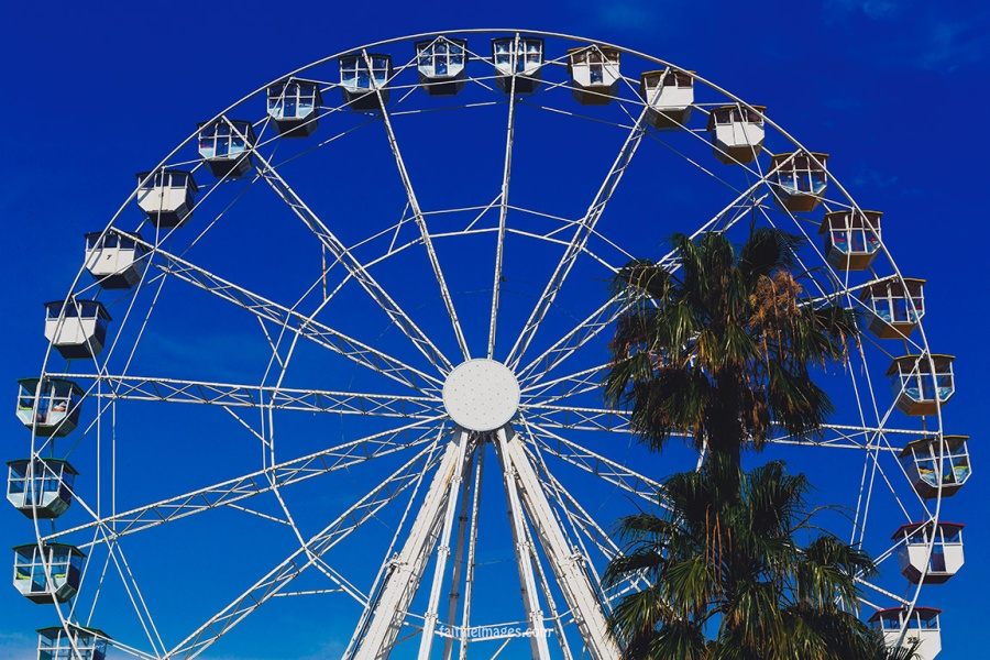 Cannes Ferris Wheel 012