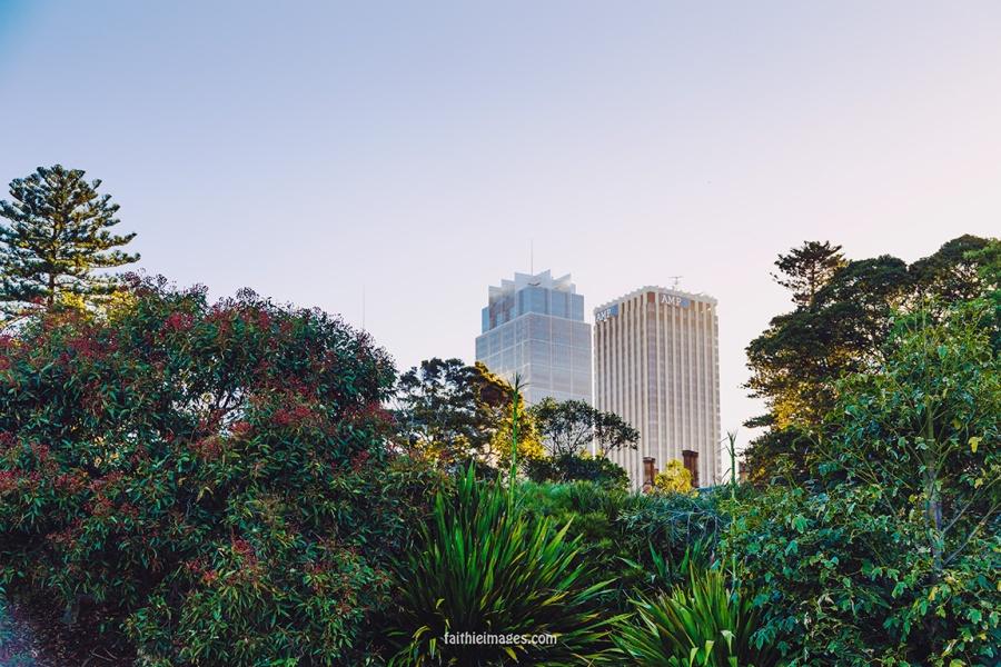 Faithieimages - Botanic garden to the House 003