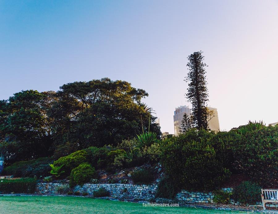 Faithieimages - Botanic garden to the House 005