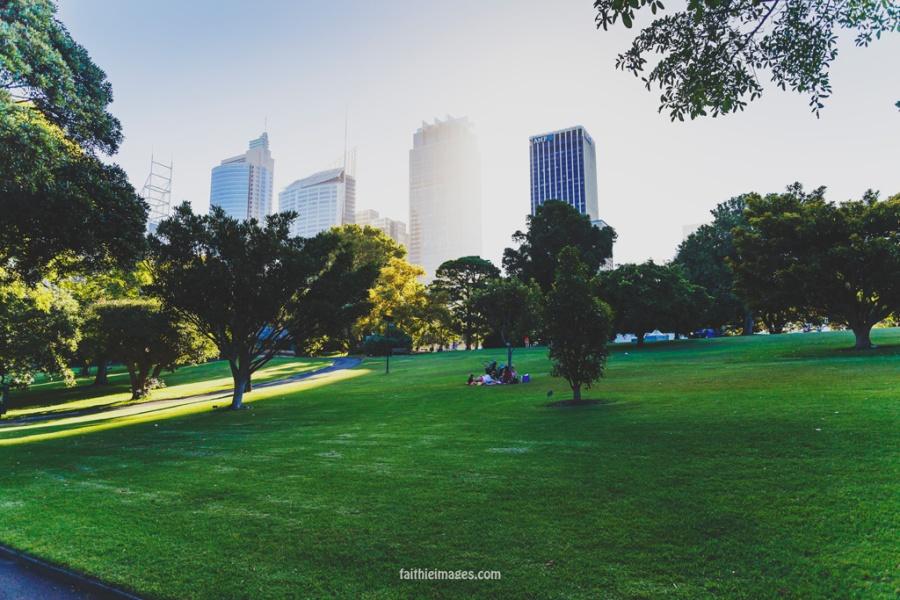 20141230-Sydney-1168
