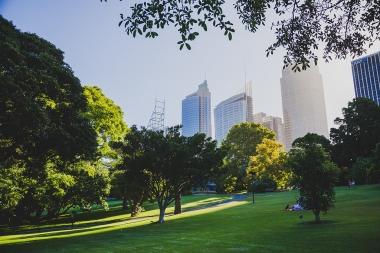 20141230 Sydney 1175