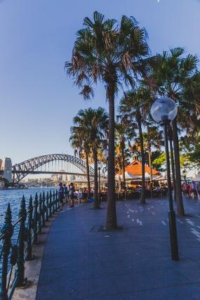 20141230 Sydney 1543